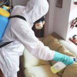 Diferencias entre sanitización y desinfección
